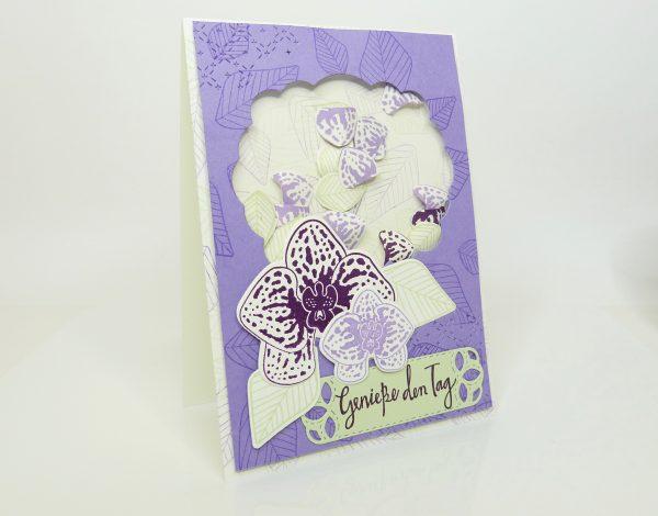 Schüttelkarte mit Orchideen von Stempelitis